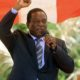 Nuevo presidente de Zimbabue / Fuente: paolarojas.com.mx