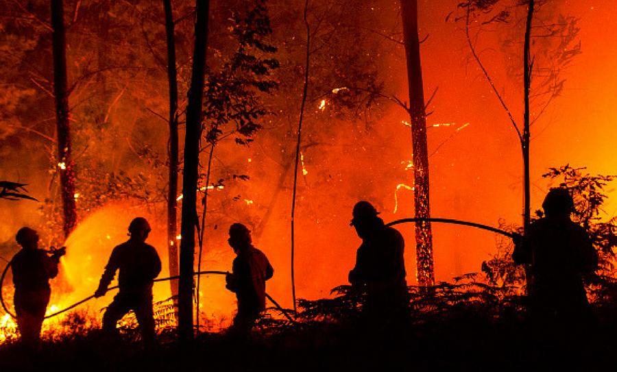 incendios forestales son provocados por el hombre, incendios, incendios forestales, Semarnat