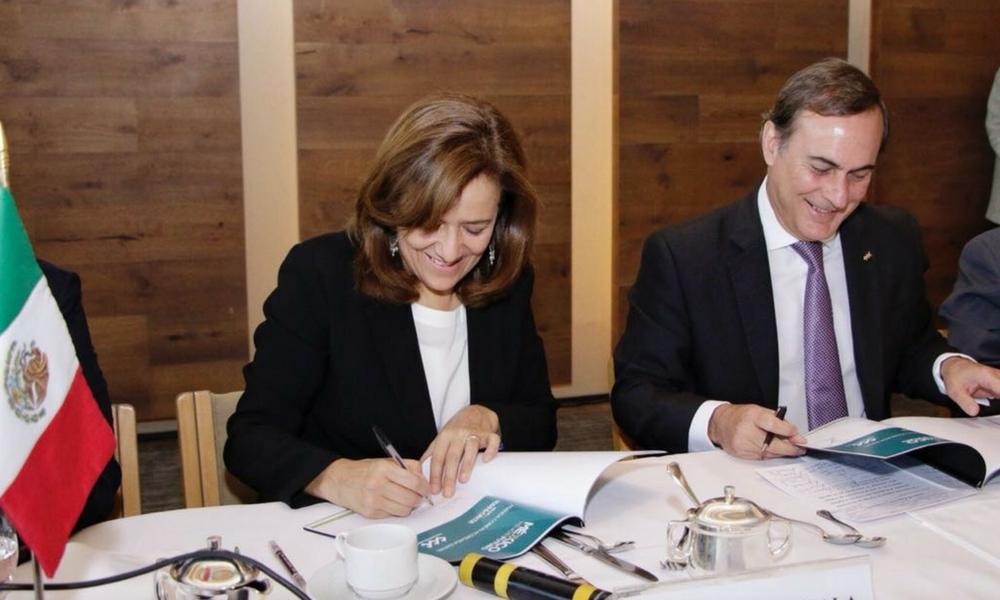 Zavala devuelve al INE un tercio, Zavala, Margarita Zavala, independiente INE, elecciones2018