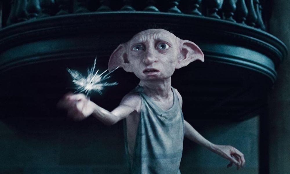 Cámara de seguridad captó a Dobby