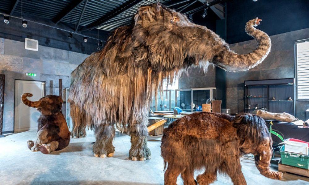 Mamuts en la precuela de 'Game of Thrones'